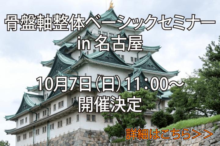 「骨盤軸整体ベーシックセミナーin名古屋」開催のお知らせ